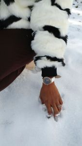 Noblag Luxury Minimalist Watch For Women White Leather Strap Black Dial 36mm